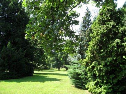 FOTKA - Léto v Královské zahradě 38