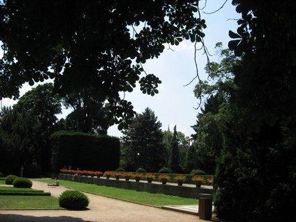 FOTKA - Léto v Královské zahradě 43