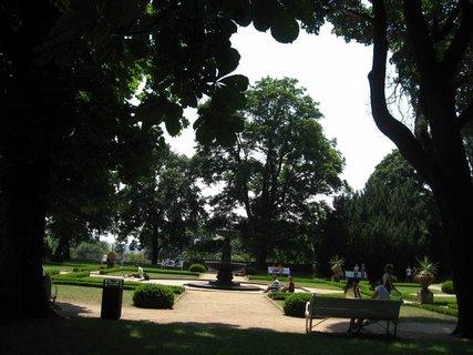 FOTKA - Léto v Královské zahradě 44