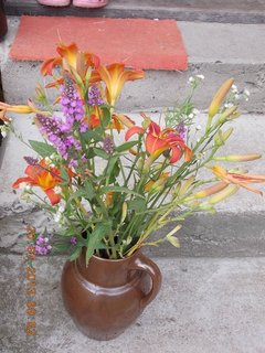 FOTKA - 18 - 20.7. - 26 - venku jsem si udělala kytici do vázy
