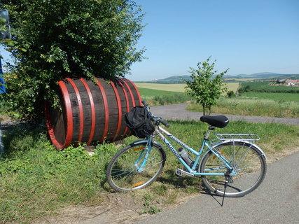 FOTKA - uprostřed v dálce je Mikulov, cyklotoulání známými místy kolem rakouských hranic, Lednicko-valtický areál