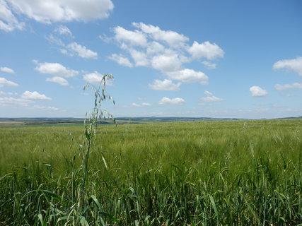 FOTKA - toulky pohraničím, Lednicko-Valtický areál