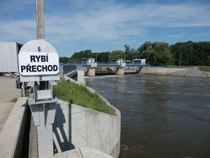 FOTKA - rybí přechod usnadňuje rybám cestu proti proudu řeky Dyje