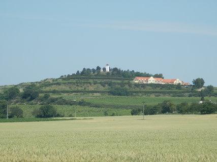 FOTKA - rozhledna Dalibor a Vinařství u Kapličky (poblíž obce Zaječí)