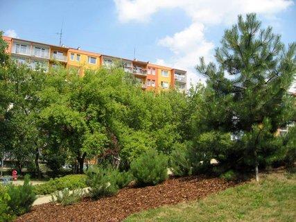 FOTKA - Dnes - liduprázdné sídliště i hřiště 22