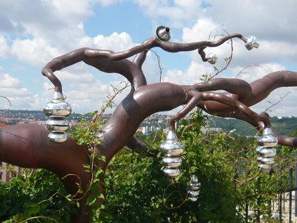 FOTKA - strom plný vůní - moderní umění v Botanické zahradě Praha-Troja