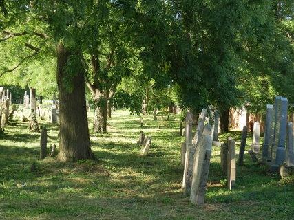 FOTKA - státem chráněná památka -židovský hřbitov v Podivíně