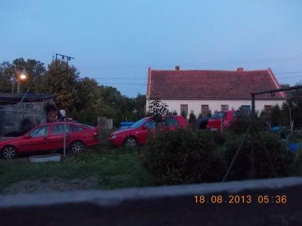 FOTKA - 16 - 19.8. - 9 - r�no u souseda, m�li velikou rodinnou oslavu
