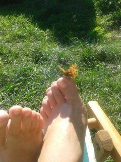 FOTKA - 16 - 19.8. - 18 - mami, motýlek se do mně asi zamiloval, mi psala dcera