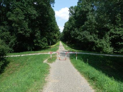 FOTKA - cyklotoul�n� ji�n� Moravou - p�kn� stezka lu�n�mi lesy pobl� Hodon�na - akor�t se nesm� zastavit, aby v�s nese�rali kom��i :-)
