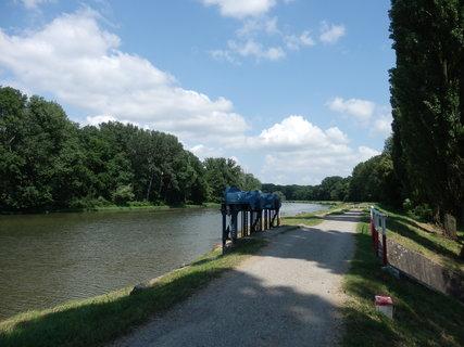 FOTKA - cyklotoulání po břehu řeky Moravy.....