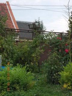 FOTKA - 19.8.+18.8. - 4 - pohled ze zahrady