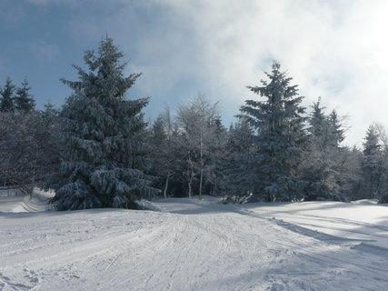 FOTKA - Zima 4