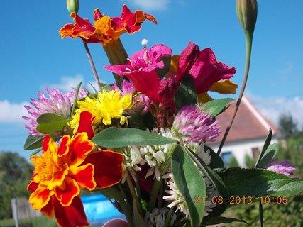 FOTKA - 21.8. - 20 - malou kytičku do malé vázy jsem si chystala