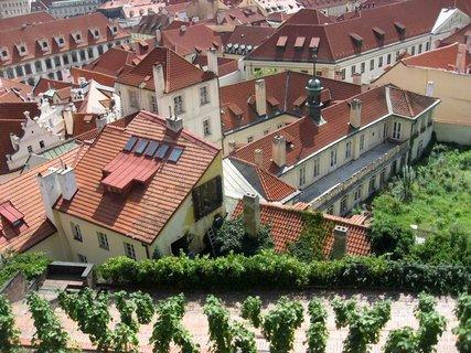FOTKA - Z procházky  - Pražský hrad 12