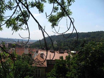 FOTKA - Z procházky  - Pražský hrad 22