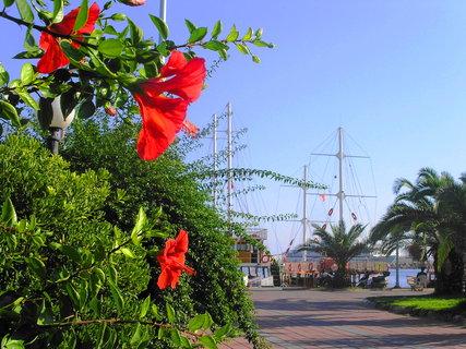 FOTKA - Cestou do přístavu v Analyi