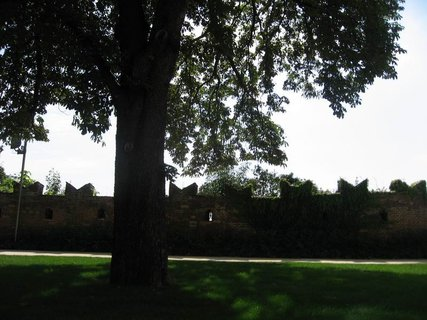 FOTKA - Z palácových zahrad 3