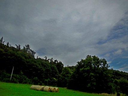 FOTKA - příroda22