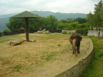 FOTKA - Zoo Ústí4