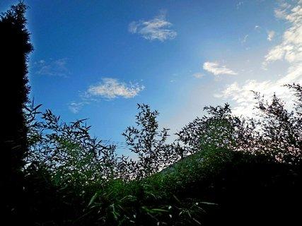 FOTKA - příroda37