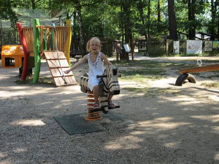 FOTKA - Domča na zebře v ZOO Hodonín