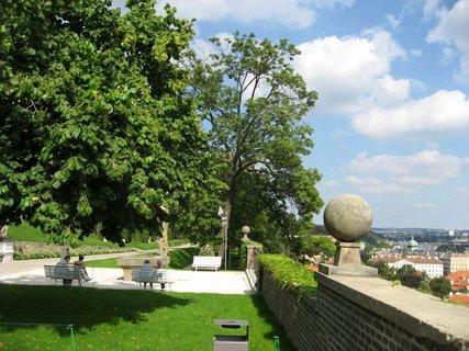 FOTKA - Dnes v zahradách hradu 18