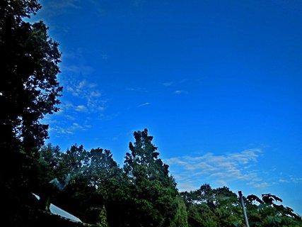 FOTKA - příroda54