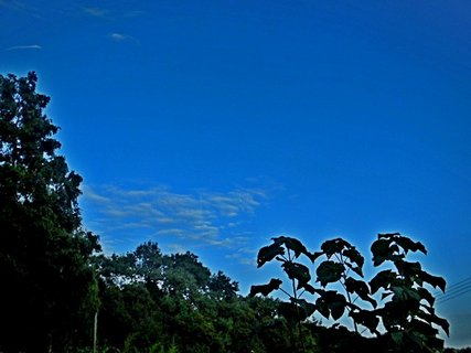 FOTKA - příroda55