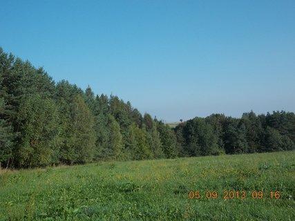 FOTKA - 4.-5.9 - 20 .  u lesa