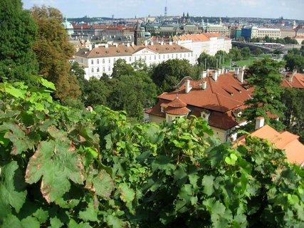 FOTKA - Svatováclavská vinice - Vyhlídková hřebenová  cesta 11