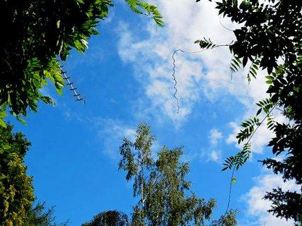 FOTKA - příroda102