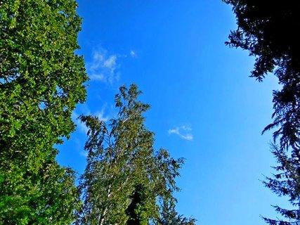 FOTKA - příroda106