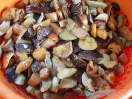 FOTKA - 6+5.9. - 2 - nakrájené, umyté houby a půjdou do mrazáku. V zimě, jako když najdu.