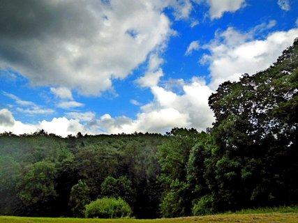 FOTKA - příroda144