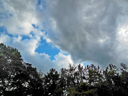 FOTKA - příroda145