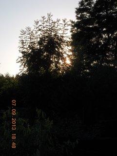 FOTKA - 8.9. + 7.9. - 18 - sluníčko už skoro není vidět
