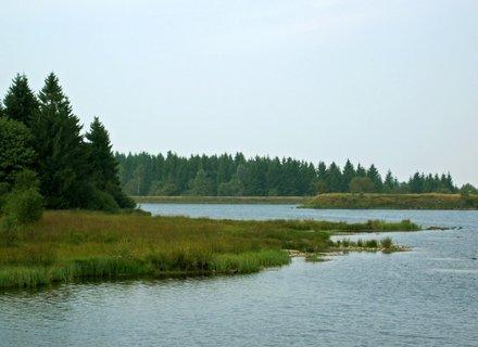 FOTKA - přírodní jezera v Altemberku nedaleko Cínovce