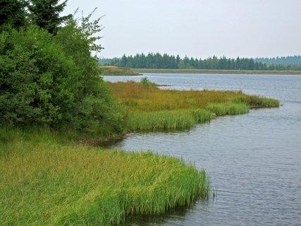 FOTKA - přírodní jezera v Altemberku nedaleko Cínovce,