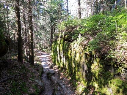 FOTKA - cesta vedla podle skal zahalených v mechu