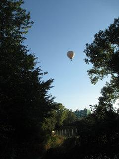 FOTKA - balon nad zahrádkou