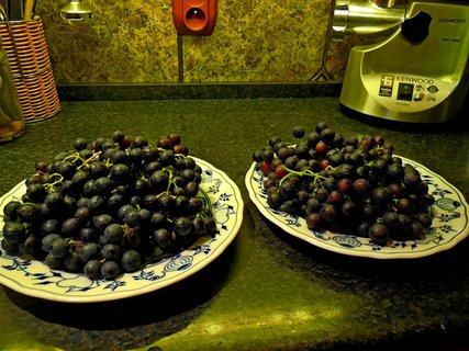 FOTKA - vaření-a18