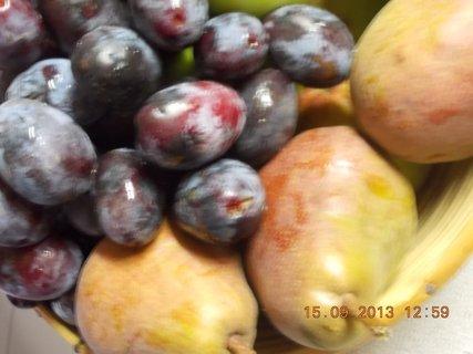 FOTKA - 15.9. - 6 - ovoce