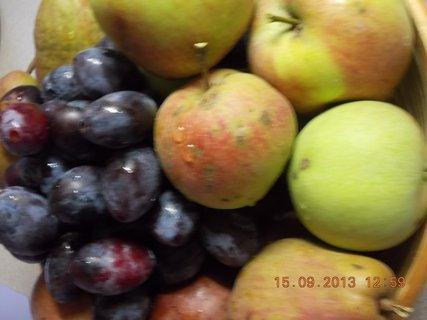 FOTKA - 15.9. - 7 - ovoce