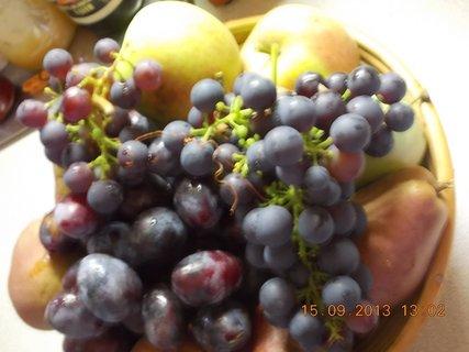 FOTKA - 15.9. - 8 - ovoce