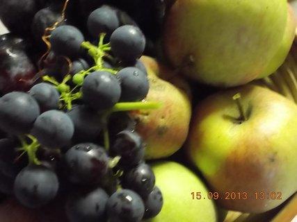 FOTKA - 15.9. - 9 - ovoce