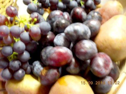 FOTKA - 15.9. - 10 - ovoce