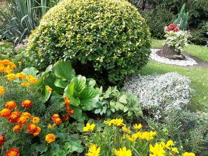 FOTKA - hezká zahrada.