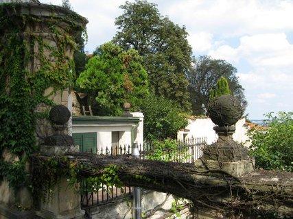 FOTKA - Zahrady pod Pražským hradem 6