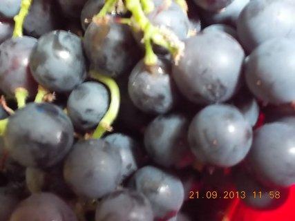 FOTKA - 21.9. - 19.9. - 18 - mísa hroznového vína - detail